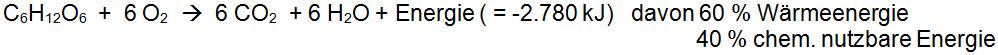 C6H12O6  +  6 O2  wir zu  6 CO2  + 6 H2O + Energie ( = -2.780 kJ)   davon 60 % Wärmeenergie und  40 % chem. nutzbare Energie