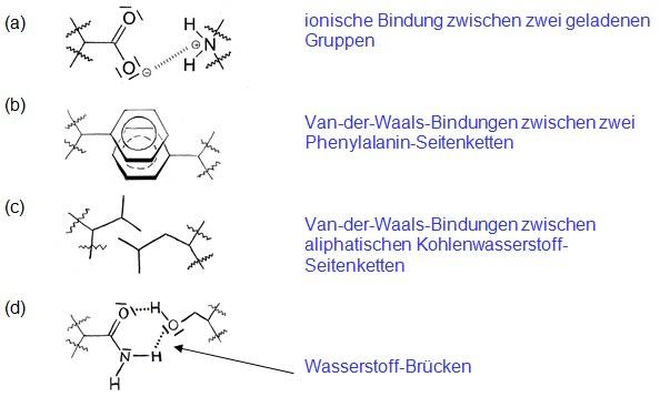 Aminosäuren – Eigenschaften — Landesbildungsserver Baden-Württemberg
