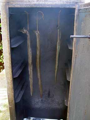 Aale werden in den Ofen gehängt