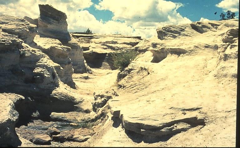 arizona desert3.jpg