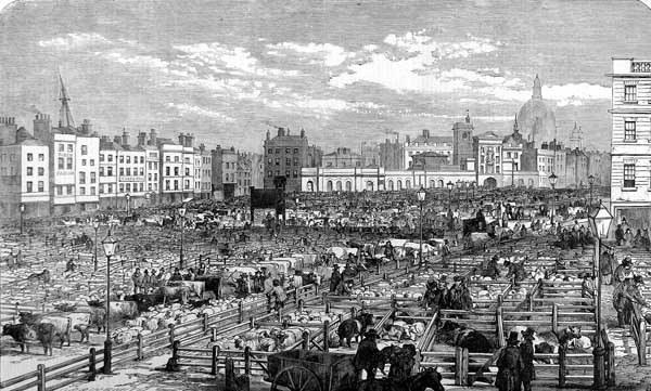 Der Smithfield Markt 1855