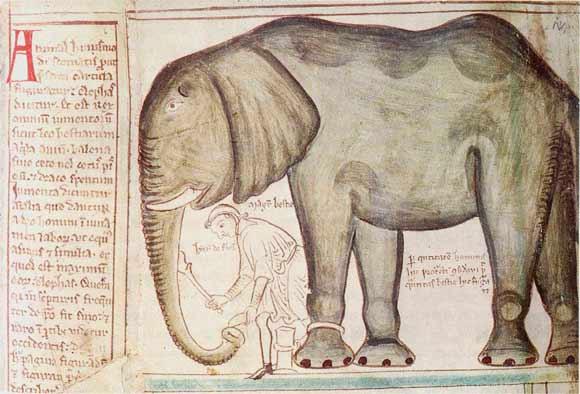 Der Elefant Ludwigs IX. von Frankreich