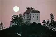 Burg WAldburg