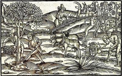 Bauern bei der Feldarbeit