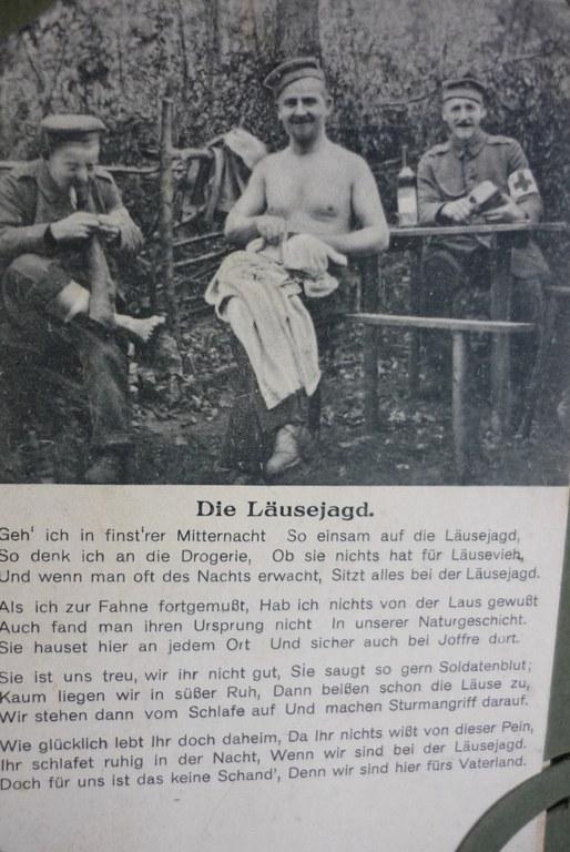 B10 Postkarte Die Laeusejagd.jpg