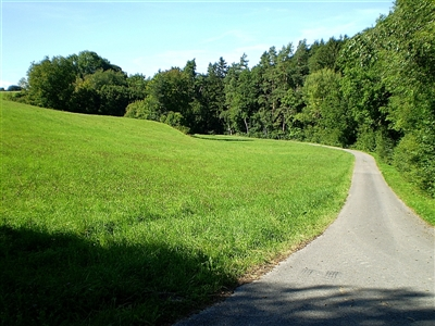 Eingang zur Waldschlucht beim Schießmauernfeld