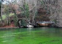 Die Aachquelle - der Wiederaustritt der versickerten Donau