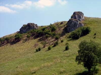 Der Riesenkopf/Kalkstein bei Undingen