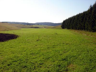 Großes Rinnental bei Undingen