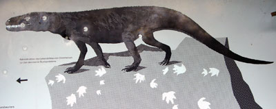 Chirotheriumsaurier