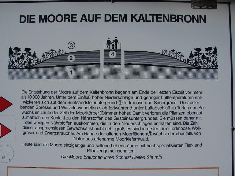 B19 Skizze Aufbau Hochmoor.JPG