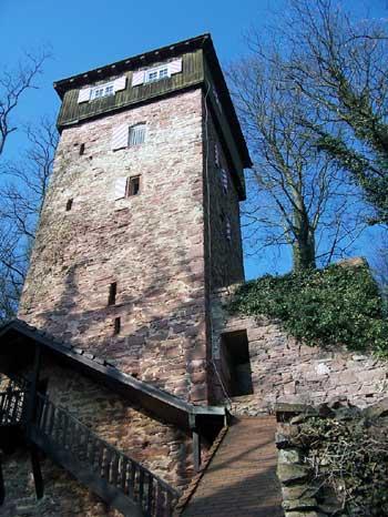 Burg Dauchstein bei Binau am Neckar