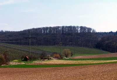 Blick von Schwaigern (Kr. Heilbronn) Richtung Südosten zur Harchenburg und den Höhen des Heuchelberges