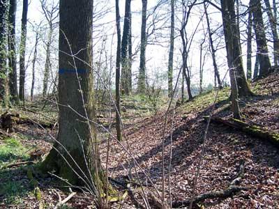 Der innere Graben und Wall der Harchenburg