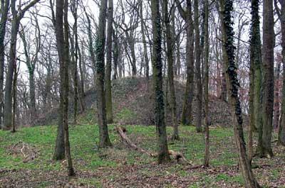 Großmotte Wigoldesberg bei Östringen-Odenheim