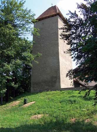 Turm der Burg Stein bei Königsbach