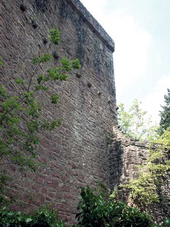 Burg Stolzeneck bei Eberbach-Rockenau