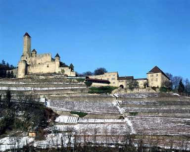 Burg Hornberg über dem Neckartal