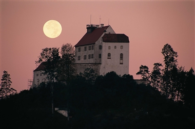 Die Waldburg bei Vollmond