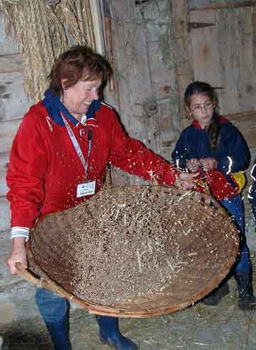 In einem flachen, großen Korb werden die ausgedroschenen Körner und die Spreu getrennt