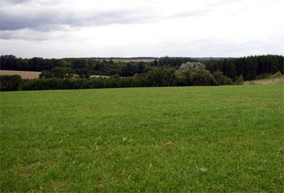 Die Schönhardter Heide, im Volksglauben und der Sage nach ein Hexentanzplatz.