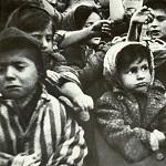 Auschwitz Befreiung