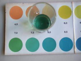 Die Farbe des Indikators wird mit einer Farbskala verglichen.