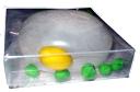 Modell einer Pflanzenzelle