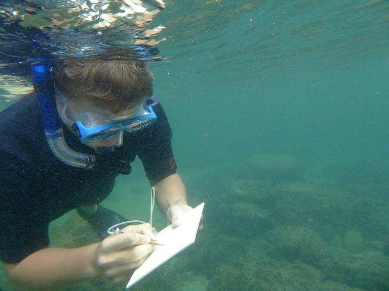 Unterwasserschreibtafel Teaser