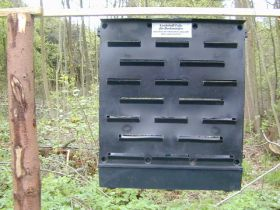 Lockstoff-Falle für Borkenkäfer