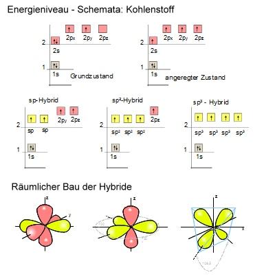 Hybridisierungen