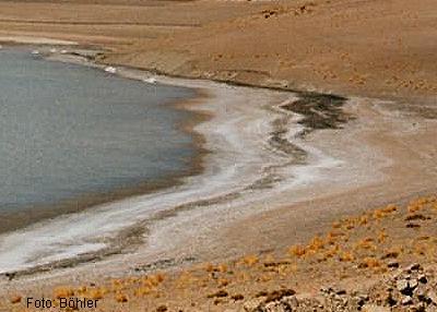 Salzsee Atacama