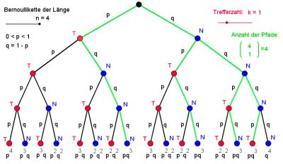 Baumdiagramm mit günstigen Pfaden