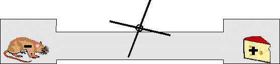 Maus / Käse Stromkreis (8k)