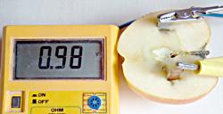 Die Apfelbatterie liefert knapp 1V
