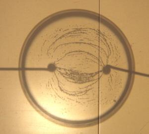 elektrisches Feld zwischen zwei Punktladungen