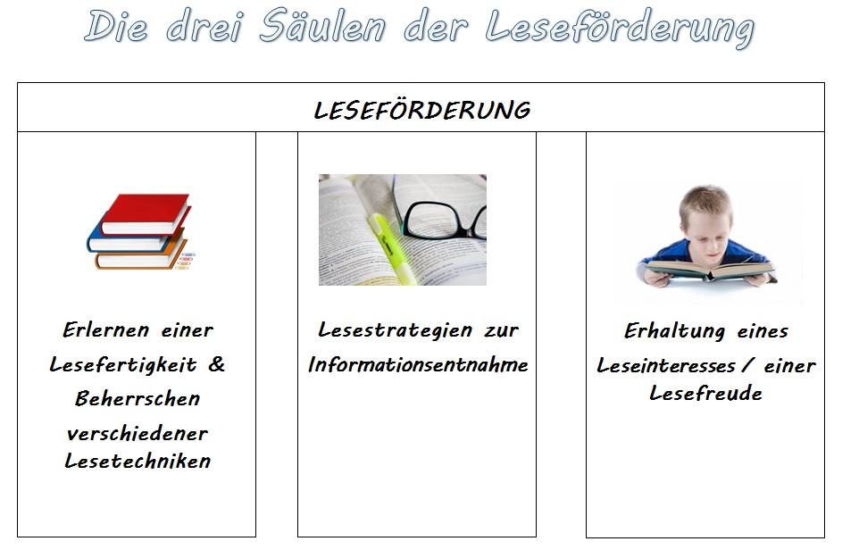 curriculum.jpg