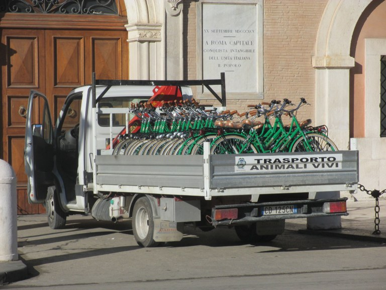 Biciclette da noleggio