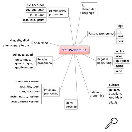 Grundwortschatz Latein - Schaubild zu den Pronomina