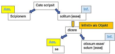 Struktur des AcI