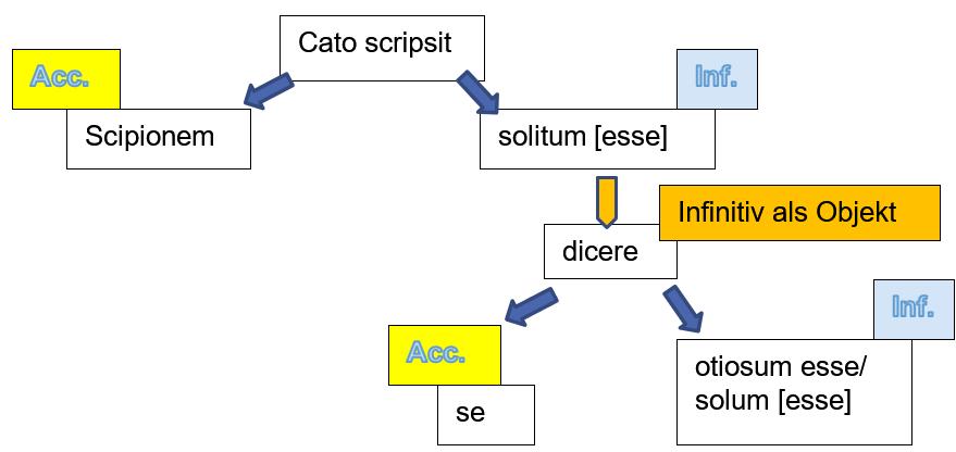 struktur-aci-de-officiis-3-1.png