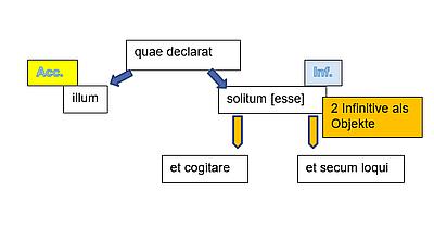 struktur-aci-de-officiis-3-1b.png