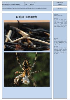 Exemplarisches Lernmaterial – Mathematik – M6.01.LT