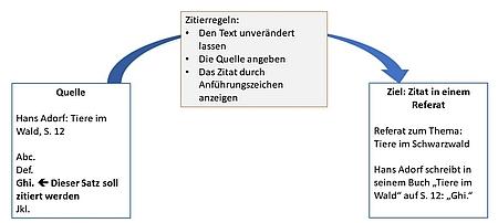 Lerngrafik zum richtigen Zitieren, Zitierregeln